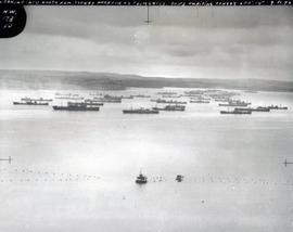 Sydney Harbour Convoys