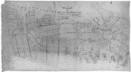 Plan of the Settlement of River John & Vicinity
