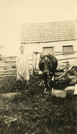 Mrs. John Siteman with cow