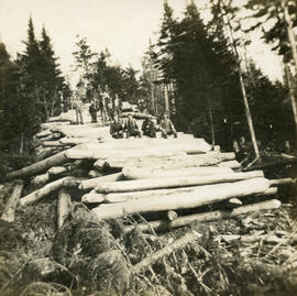 Men at lumber camp